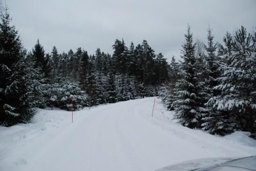Sweden xmas  0012 087